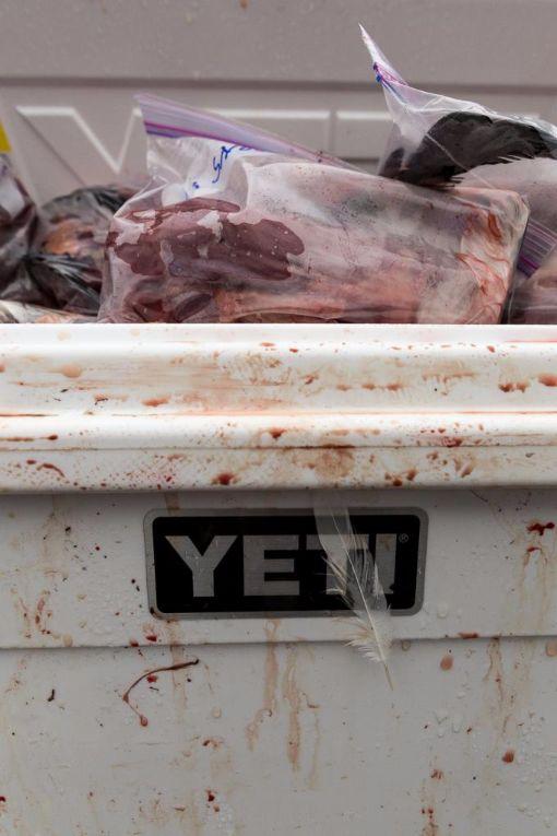 Yeti Hunting Cooler