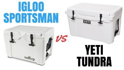 Igloo Sportsman vs Yeti