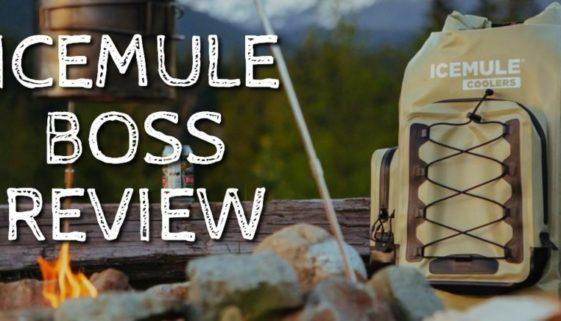 IceMule Boss Review