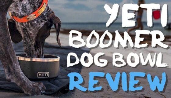 Yeti Boomer Dog Bowl Review