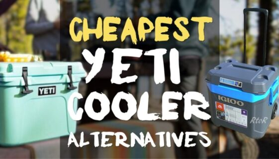 cheapest-yeti-cooler-alternatives