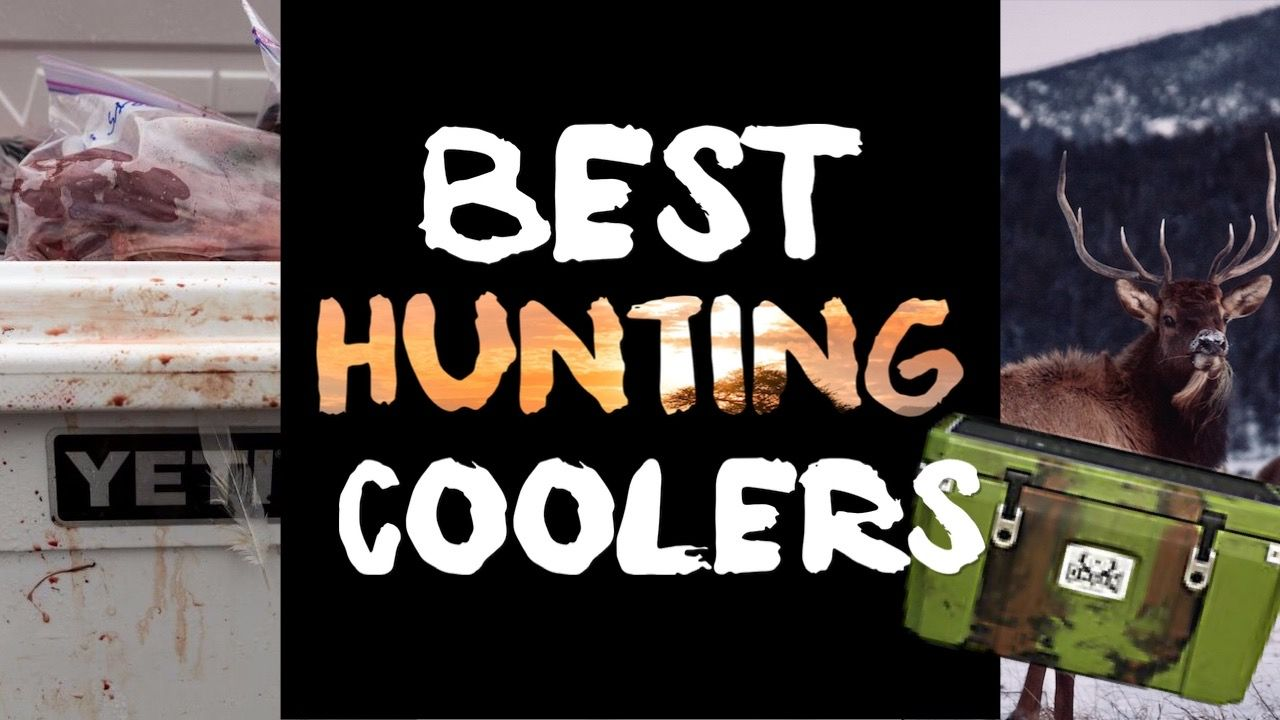 Best Hunting Coolers