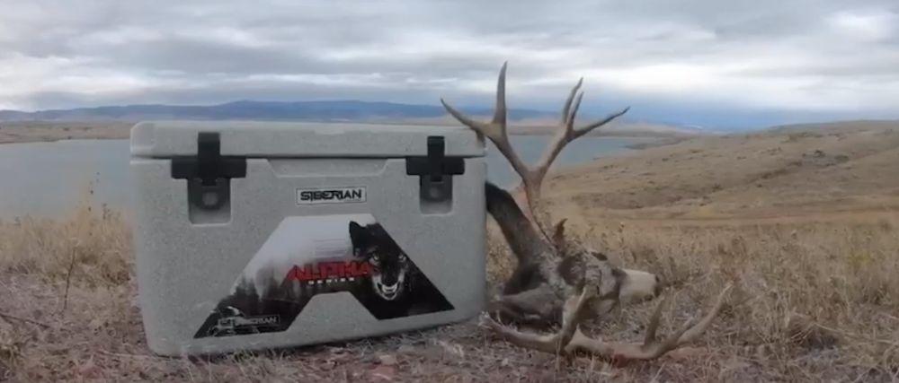 Siberian Alpha hunting cooler with elk horns game meat