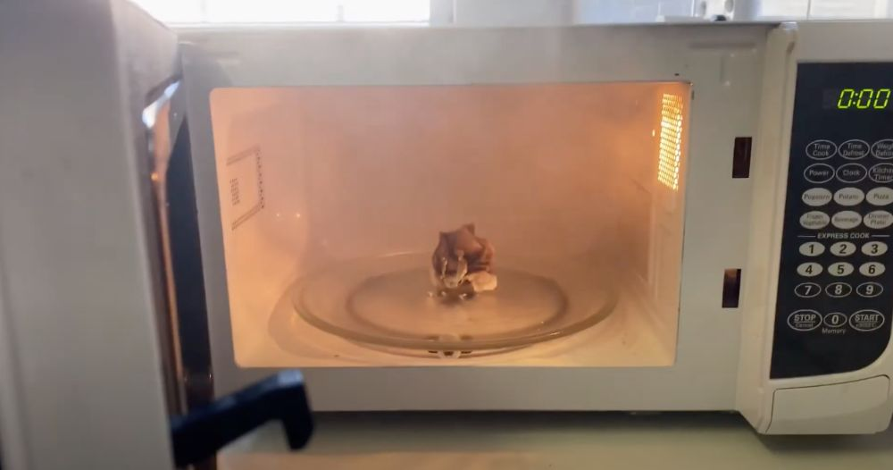 Paper towel burned and smoking in microwave