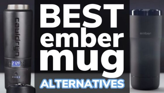 Best Ember Mug Alternatives