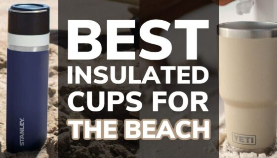 Best Insulated Cups For The Beach
