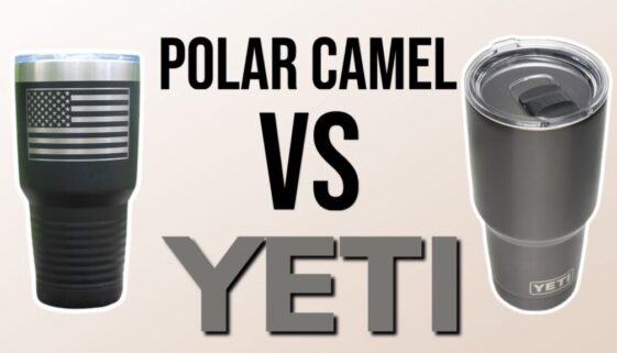 Polar Camel vs Yeti