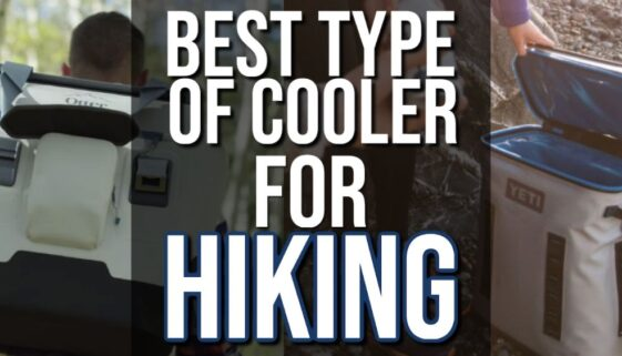 Best Types of Coolers for Hiking