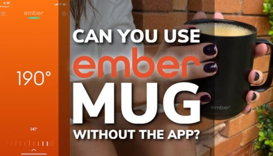 Can You Use The Ember Mug Without The App?