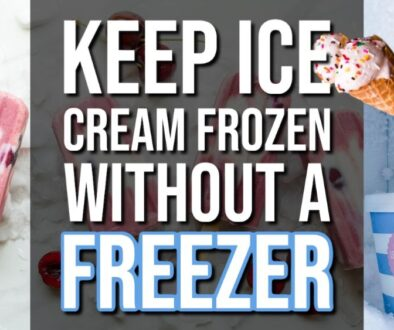 How To Keep Ice Cream Frozen Without a Freezer