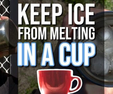 11 Ways To Keep Ice From Melting In a Cup